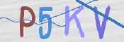 Obrázek CAPTCHA